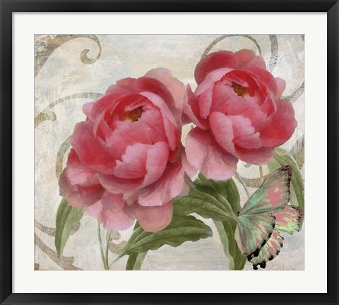 Framed Apricot Peonies I Print
