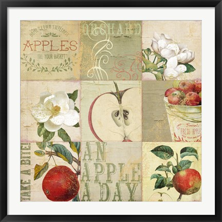 Framed Apple Blossoms III Print