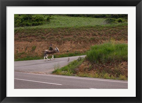 Framed Old man rides a donkey loaded with wood, Anguiano, La Rioja, Spain Print