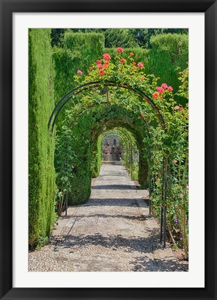 Framed Archway of trees in the gardens of the Alhambra, Granada, Spain Print