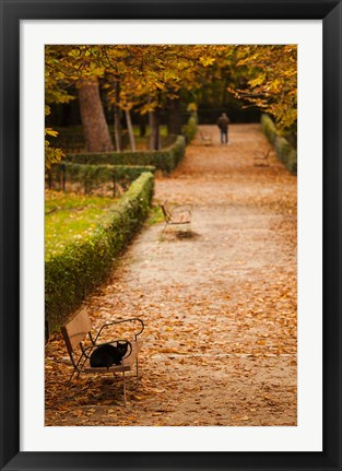 Framed Parque del Buen Retiro, Madrid, Spain Print