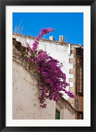 Framed Spain, Andalusia, Banos de la Encina Bougainvillea Growing on a Roof Print