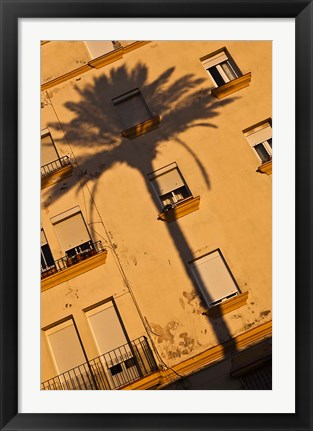 Framed Spain, Cadiz, Campo del Sur, Palm Shadow Print