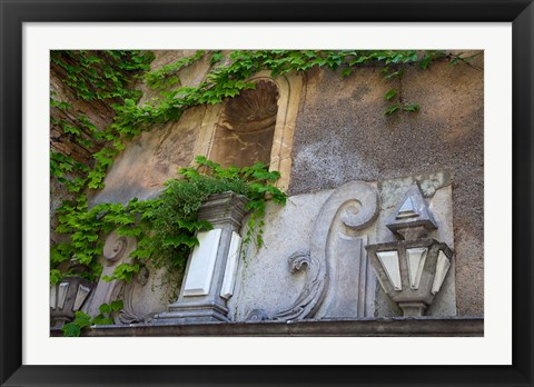 Framed Spain, Granada Ivy growing on the walls of the Alhambra Print