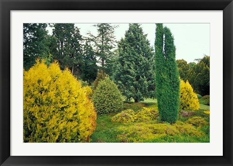 Framed Exbury Gardens, Rothschild Estate, New Forest, Hampshire, England Print
