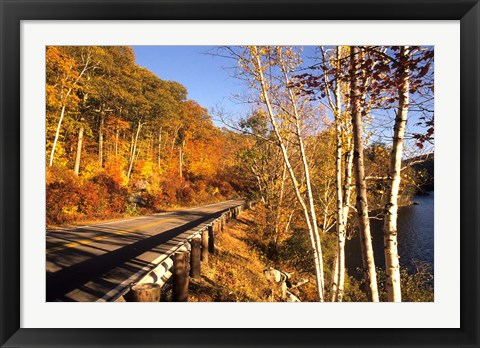 Framed Tranquil Road with Fall Colors in New England Print