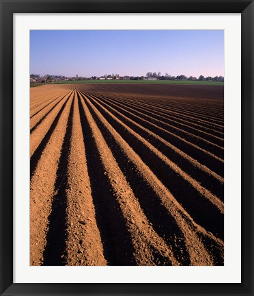 Framed Ploughed Field, Surrey, England Print