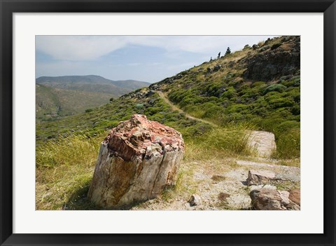 Framed Petrified Forest, Sigri, Lesvos, Mithymna, Northeastern Aegean Islands, Greece Print