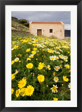 Framed Wildflowers and church of St, Island of Spinalonga, Crete, Greece Print
