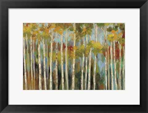 Framed Young Forest III Print