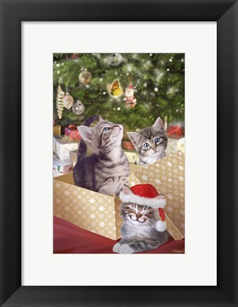 Framed Kittens and Butterfly Under The Tree Print