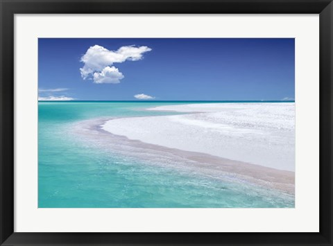Framed Tropical Simplicity Print