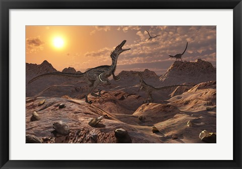 Framed Pack of Carnivorous Velociraptors from the Cretaceous Period Print
