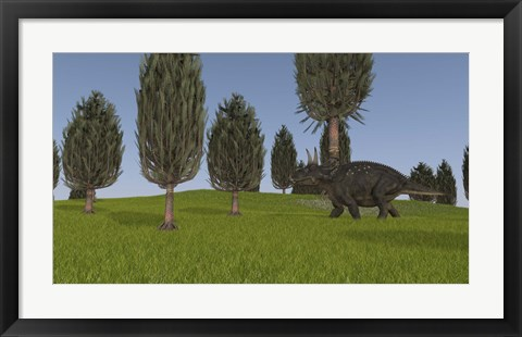 Framed Triceratops Walking across a Grassy Field 1 Print