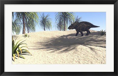 Framed Triceratops Walking in a Tropical Environment 1 Print