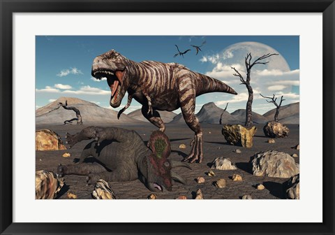 Framed T Rex is about to make a Meal of a Dead Triceratops Print