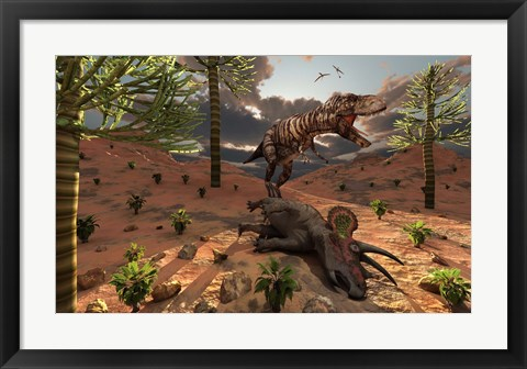 Framed T-Rex comes across the Carcass of a Dead Triceratops Print