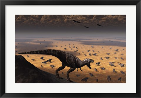 Framed lone T Rex looks down on a large Herd of Triceratops Print