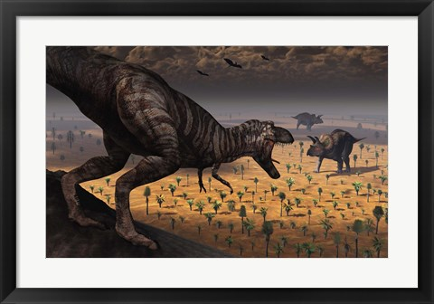 Framed Tyrannosaurus Rex spots two Passing Triceratops Print