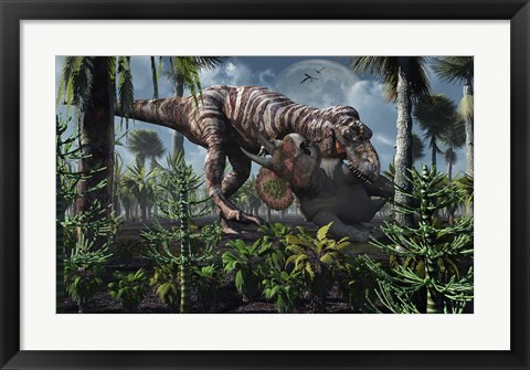 Framed Tyrannosaurus Rex Kills a Triceratops as its Next Meal Print