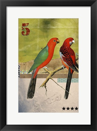 Framed Birds Print
