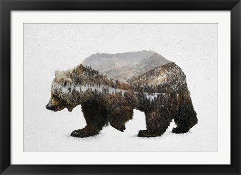 Framed Kodiak Brown Bear Print