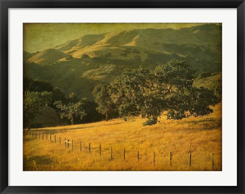 Framed Oak and Fence Print