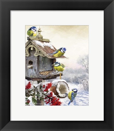 Framed Bluetits 1 Print