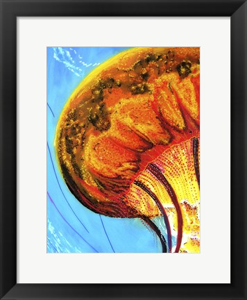 Framed Jelly Print