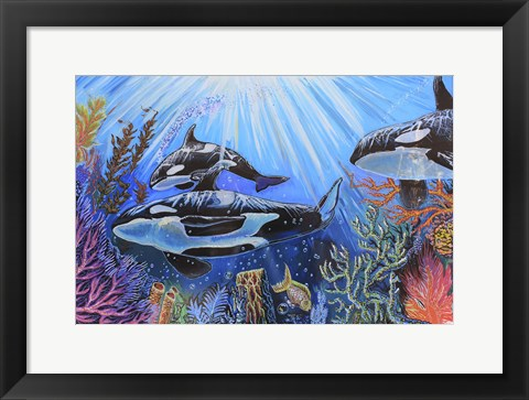 Framed Killer Whales Print