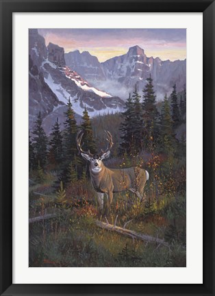 Framed High Country Muley Print