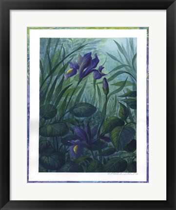 Framed Water Iris Print