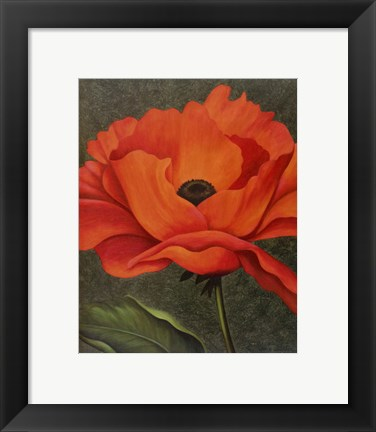 Framed Red Poppy Print