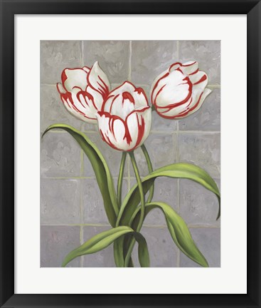 Framed Red-Striped Tulips Print