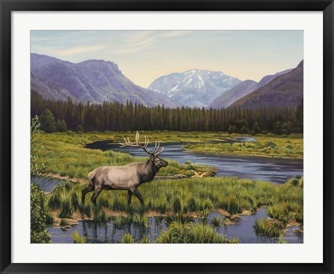 Framed Meadows Of Grand Lake, Colorado Print