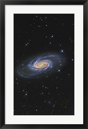 Framed NGC 2903 is a barred spiral galaxy in the Constellation of Leo Print