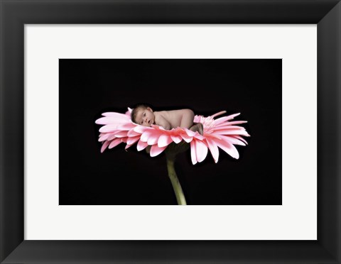 Framed Winters Nicole Ii Flower Print