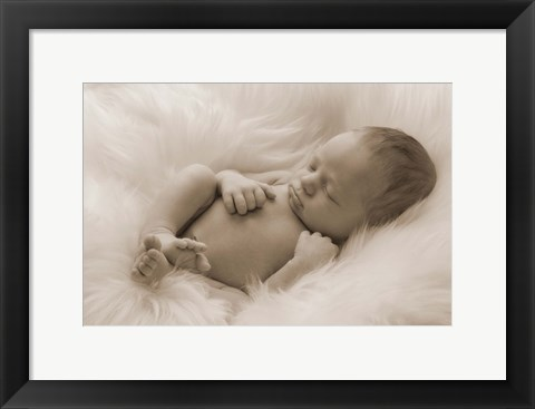 Framed Baby On Fur Print