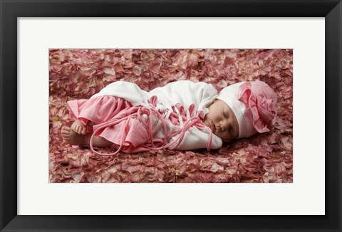 Framed Baby On Rose Petals Print