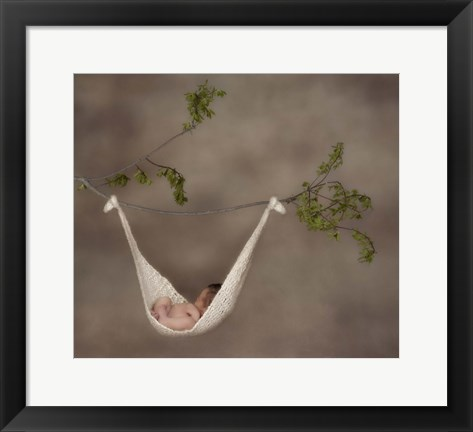 Framed Baby In Knit Hammock Print