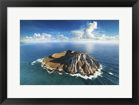 Framed Rabbit Island Print