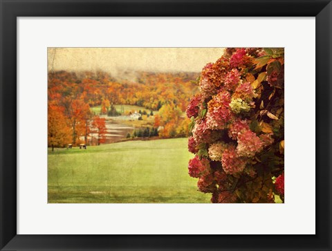 Framed Autumn Colors Print