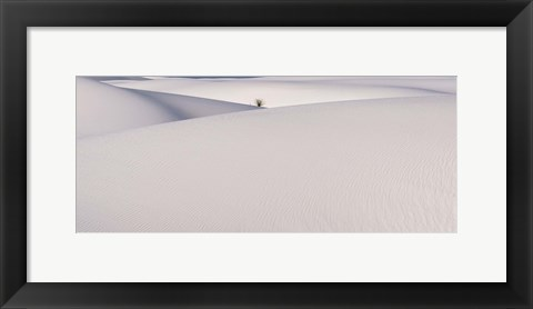 Framed White Sands Print