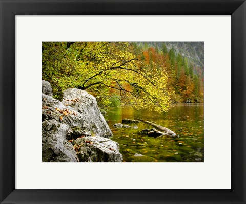 Framed Reaching Color Print