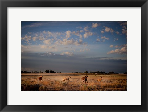 Framed Open Spaces Print