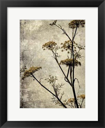 Framed Big Sur Yarrow I Print