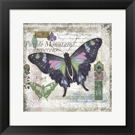 Framed Butterfly Artifact IV Print