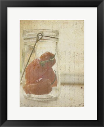 Framed Herb Still Life V Print