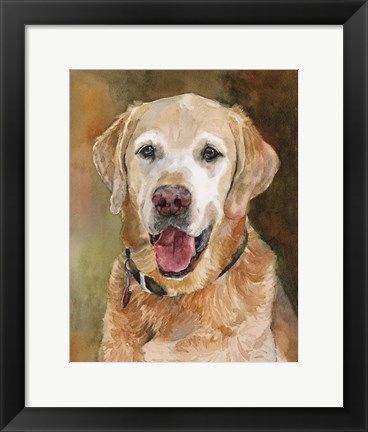 Framed Rex Golden Retriever Print