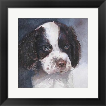 Framed Minnie Springer Spaniel Print